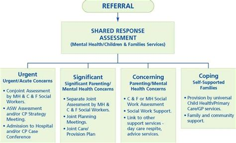 Mental Health Care Plans Examples