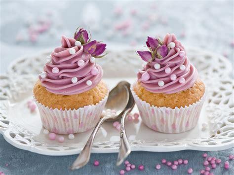cuisine cupcake cupcakes food wallpaper 35346319 fanpop