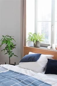 Grünpflanzen Im Schlafzimmer : zimmerpflanzen im schlafzimmer garten fr ulein ~ Watch28wear.com Haus und Dekorationen