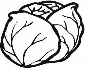 Lettuce 5 coloring page | Super Coloring - ClipArt Best ...