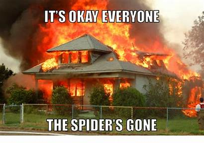 Burning Spider Down Fire Spiders Kill Killed