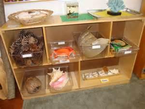 Preschool Science Area Ideas