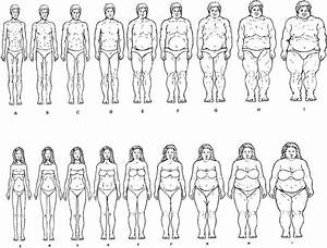 Male And Female Body Image Instrument  Master Form