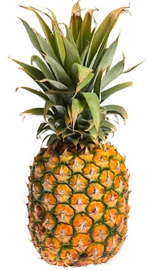pineapple obsession for your pineapple obsession