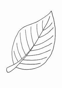 Feuilles D Automne à Imprimer : coloriage la belle feuille d 39 automne ~ Nature-et-papiers.com Idées de Décoration