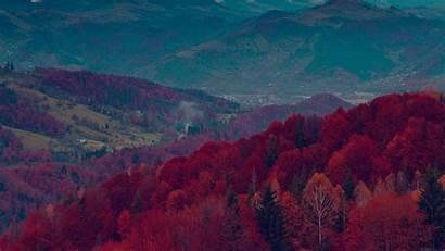 Fall Nature Mountain Dark Fun Tree Desktop