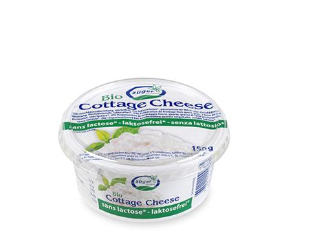 lactose free cottage cheese lactose free organic cottage cheese z 252 ger frischk 228 se ag