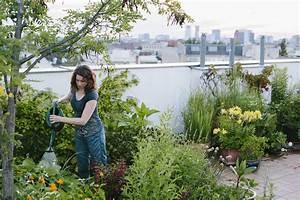 Urban Gardening Definition : urban gardening definition und vorteile bewusst haushalten ~ Eleganceandgraceweddings.com Haus und Dekorationen
