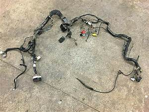 Ford E350 Wiring Harnes