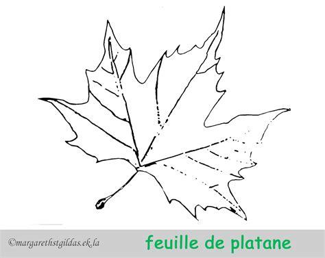 feuille arbre dessin az coloriage avec enikca  dessin