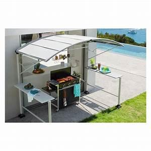Barbecue A Gaz Castorama : abri barbecue en acier neiba hesperide achat vente barbecue abri barbecue en acier neiba ~ Melissatoandfro.com Idées de Décoration