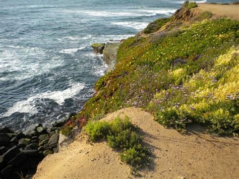 Sunset Cliffs Natural Park San Diego All You Need