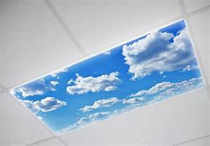 Ceiling light panels decorative fluorescent covers