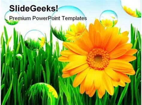 sunflower nature powerpoint template  powerpoint