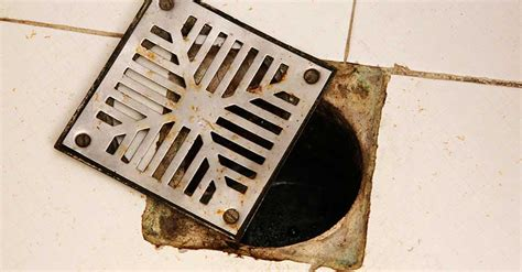 how to unclog a grease clog in the kitchen sink service plumbing and drain cleaning 9974