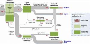 Increasing The Revenue From Lignocellulosic Biomass  Maximizing Feedstock Utilization