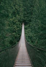 Nature IPhone Wallpaper Tumblr