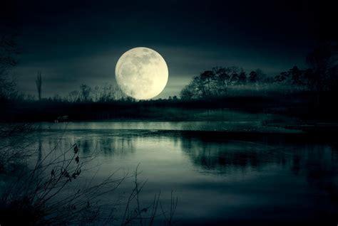 How Moonlight Sets Nature's Rhythms
