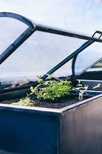 Hochbeet Tipps Anlegen Bepflanzen Und Leckeres Gemse