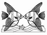 Angelfish Coloring Pages Kissing Angel Couple Drawing Fish Death Queen Clipart Clipartmag sketch template