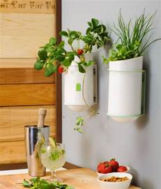 what to put in kitchen canisters 20 kitchen wall decors and ideas mostbeautifulthings