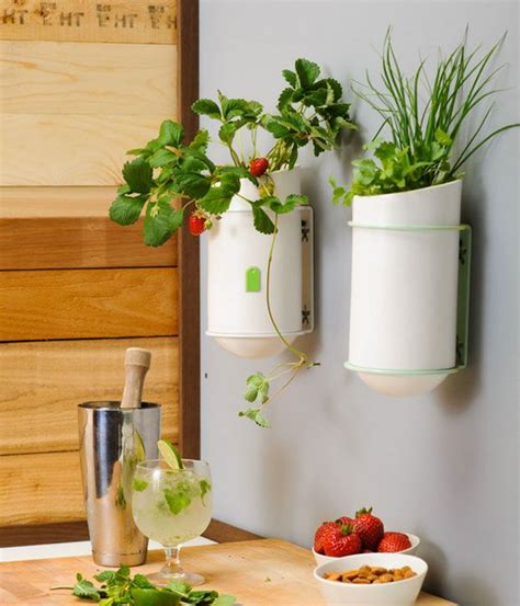 kitchen wall decor ideas unique kitchen wall décor ideas decozilla