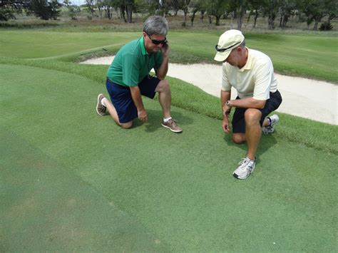 Zoysia Grass Mowing Tips From Your Highland Village Lawn