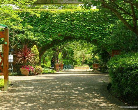 pictures beautiful gardens beautiful garden wallpapers wallpaper cave