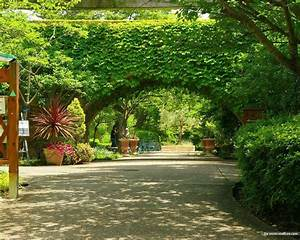 Beautiful garden wallpapers wallpaper cave for Garden wallpaper