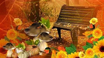 Fall Pumpkin Thanksgiving Harvest Autumn Desktop Screensavers