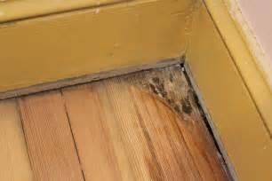 Linoleum Flooring Home Depot