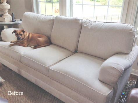 dog friendly sofa fabric sofa slipcover the slipcover maker