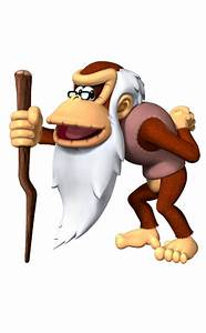 4th Playable Character for Donkey Kong Country: Tropical ...