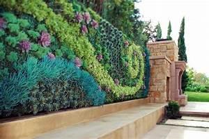 Mur Vegetal Exterieur : plantes pour mur v g tal ext rieur pivoine etc ~ Melissatoandfro.com Idées de Décoration