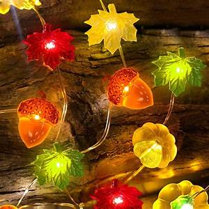 Decorx, 3d, Pumpkin, Maples, Acorns, String, Lights, Fall, Decor, 10ft, 30led, Warm, White, Battery, Powered