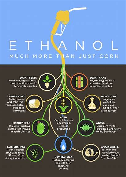 Ethanol Infographic Corn Freedom Much Fuel Than
