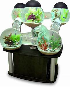 Multi-Room Fish Tanks: The Silverfish Aquarium from ...