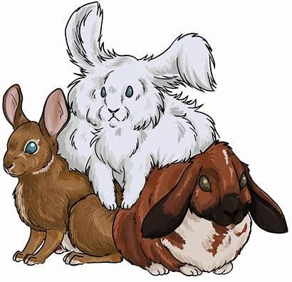 Rabbit Cottontail Clipart Eastern Transparent Tiberius Webstockreview