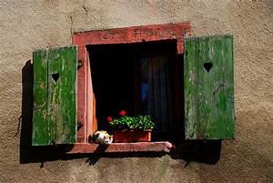 Aussaat Auf Der Fensterbank : die katze auf der fensterbank foto bild tiere haustiere katzen bilder auf fotocommunity ~ Whattoseeinmadrid.com Haus und Dekorationen