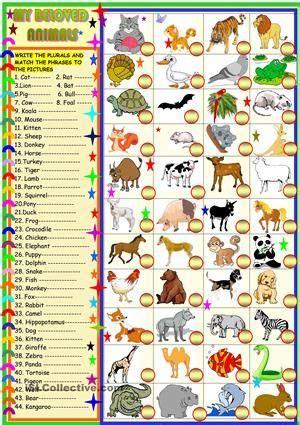 beloved animals plurals  matching  images