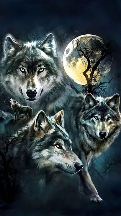 Wolf Iphone Face Wolves 3d Lobo 3diphonewallpaper