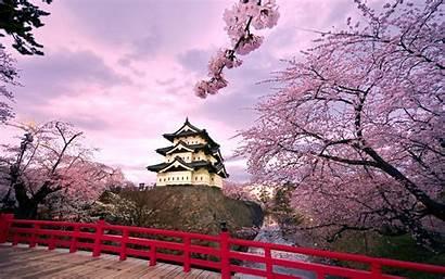 Japan Castle Hirosaki Wallpapers Japanese Castles 1920