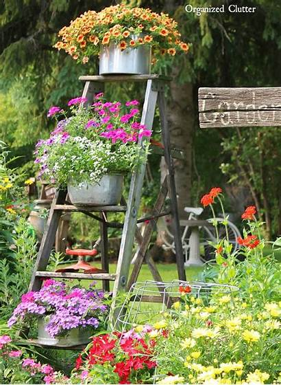Garden Decor Ladder Display Flowerpot Outdoor Designs