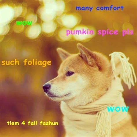 Shibe Meme Maker - breaking news tail wagging unveils secret mysteries of dog modern thrill