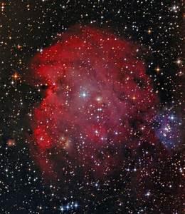 NGC 2175, The Monkey Head Nebula | Joseph Yates - Sky ...