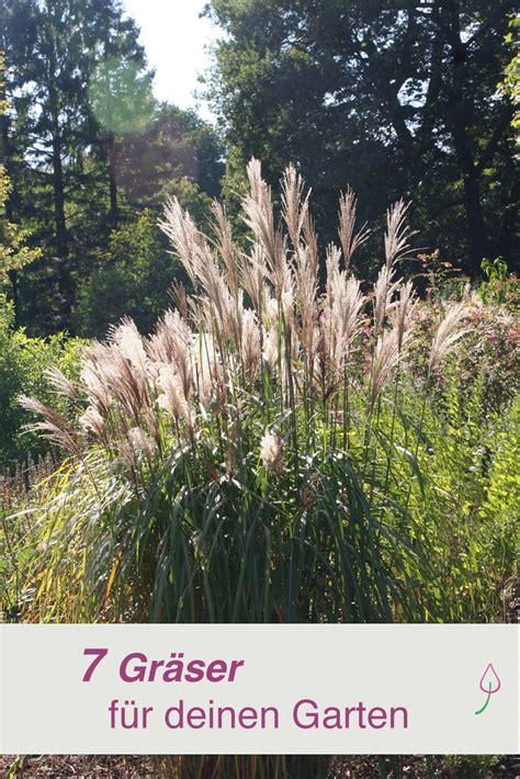 Gartengestaltung Gräser by 7 Tolle Ziergr 228 Ser F 252 R Deinen Garten Garten Vorgarten