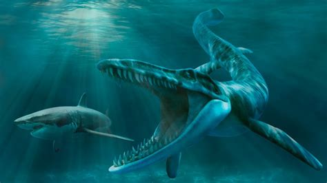 scariest ancient sea monsters   lived youtube