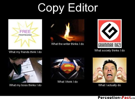 Meme Editor Photo - copy editor what people think i do what i really do perception vs fact