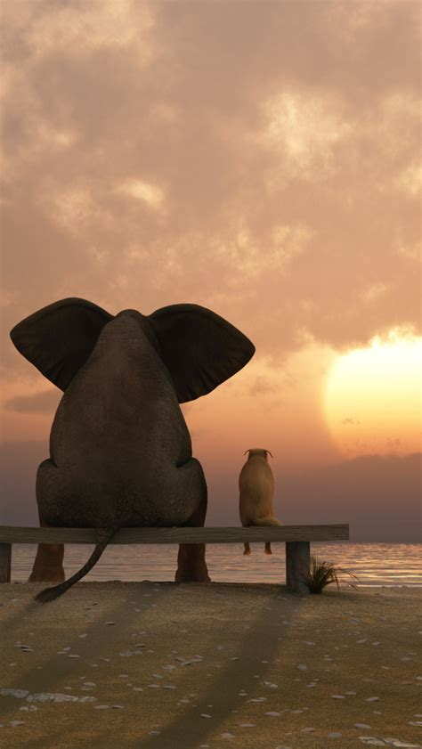 elephant wallpaper iphone gallery
