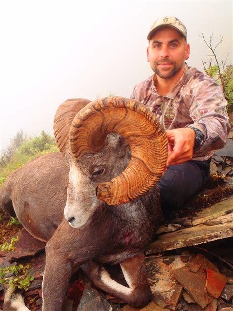 sheep columbia hunt british stone